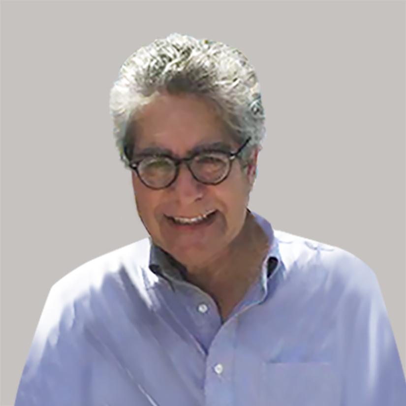 Lawrence E. Shapiro, Ph.D.
